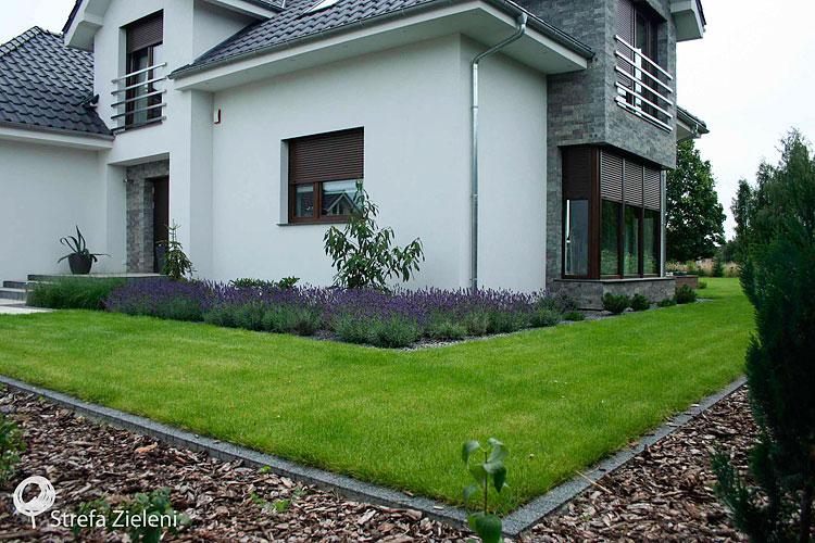 Ogród przydomowy, lawendy, trawnik