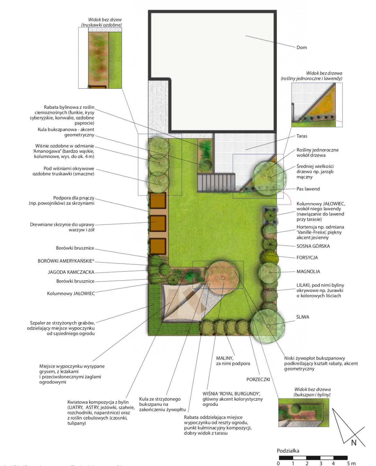 Ogród przydomowy, projekt, rzut z góry
