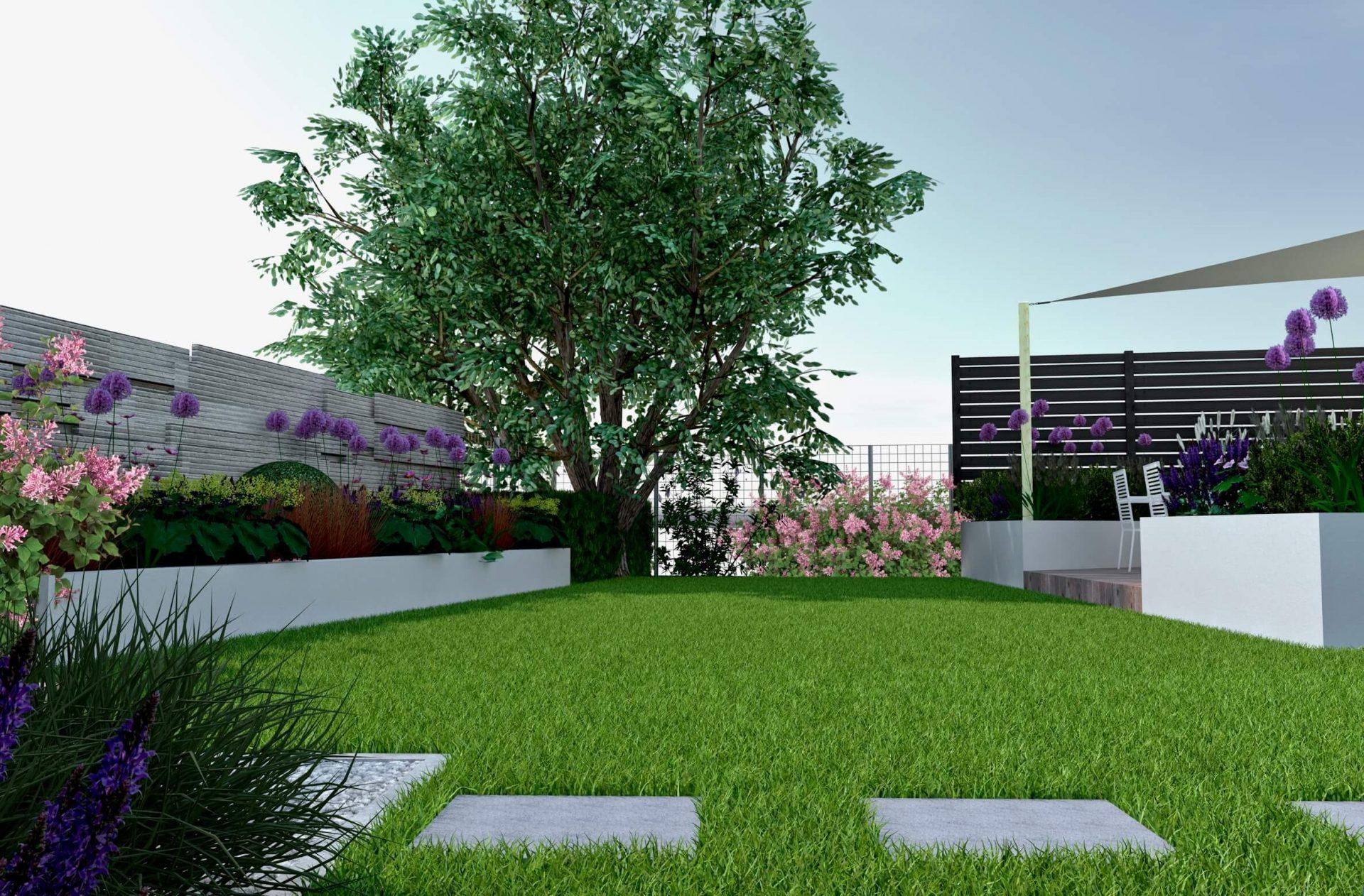 Wizualizacja, białe murowane donice, czosnek ozdobny, żagiel przeciwsłoneczny, projekt ogrodu