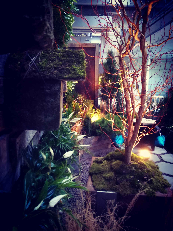 Ogród pokazowy, inspiracja aranżacje, I nagroda 2018, zielona ściana