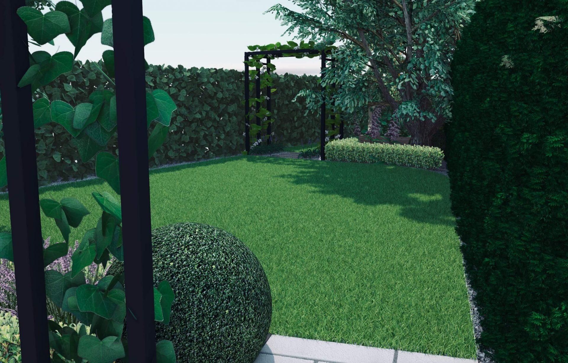 Wizualizacja ogrodu, projekt ogrodu, kula bukszpanowa, metalowa pergola, żywopłoty
