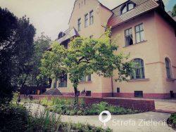 Zabytkowa willa z ogrodem, żwirowa ścieżka, jabłonie, byliny, Poznań, secesja